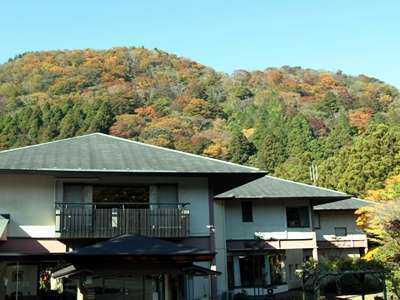 箱根 きのくにや旅館 遊仙観(ゆうせんかん)