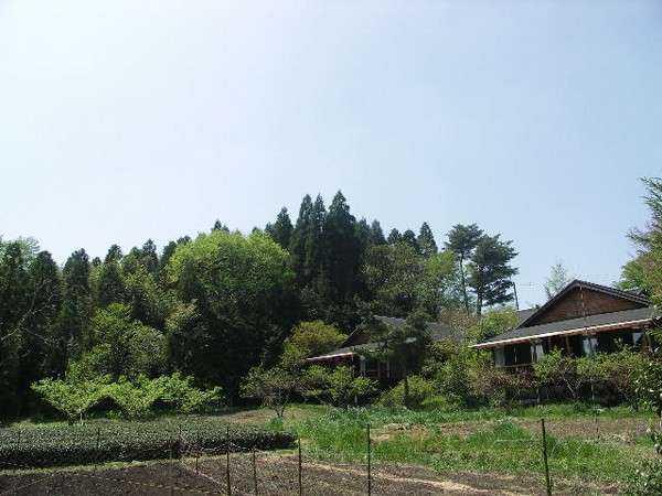 山荘 紗羅樹